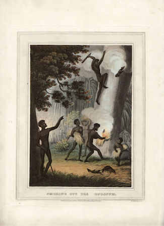 1813. Smoking Out The Opossum. Aboriginals Hunting Possums. Antique Print. J. H. CLARK, JOHN HEAVISIDE.