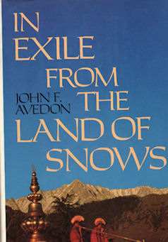In Exile from the Land of Shadows. JOHN F. AVEDON.