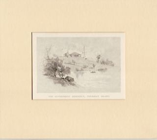 The Government Residency, Thursday Island. Antique Print