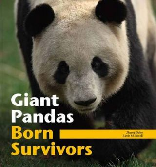 Giant Pandas. Born Survivors. ZHANG ZHIHE AND SARAH BEXELL