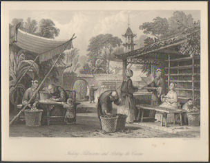 Feeding Silkworms, and Sorting the Cocoons. [China Antique Print]. THOMAS ALLOM